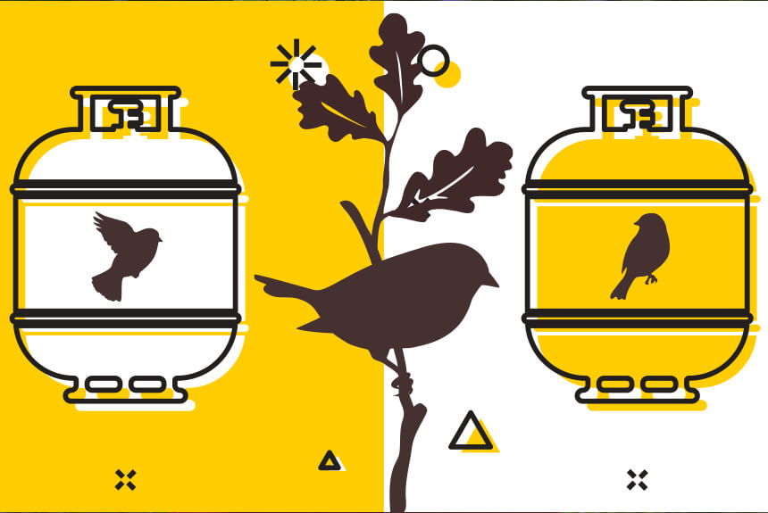 Propane and Birds